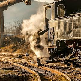 Steam train by Cristi Rus - Transportation Trains ( old, train, steam )
