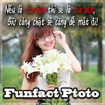 anh tam trang, che anh status 1.0.9 Apk