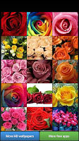 Screenshot of Beautiful Roses HD Wallpapers