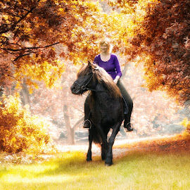 Touching Autumn by John Phielix - Sports & Fitness Other Sports ( riding, woman, horse, trees )