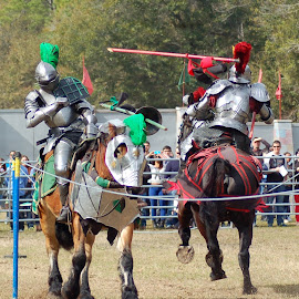 Jousting by Philip Molyneux - News & Events Entertainment