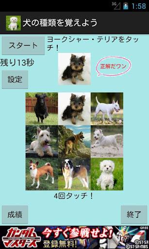 犬の種類を覚えよう