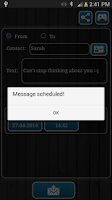Screenshot of Fake SMS
