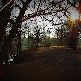 Quiet & Cool by Brant Stevenson - Landscapes Prairies, Meadows & Fields