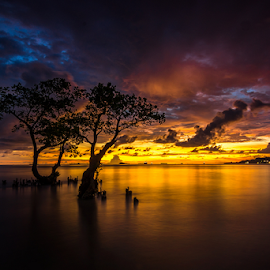 The Couple by Ade Noverzan - Landscapes Sunsets & Sunrises ( sunset, trees, beach, dusk )