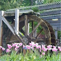 échapper à Waterwheel icon