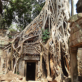 Angkor Wat by Carlien Oberholzer - Travel Locations Landmarks