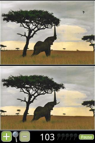 Animali 1 Paranoid Differences