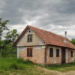 Old house by Milan Z81 - Buildings & Architecture Decaying & Abandoned ( old, tree, croatia, house, abandoned )