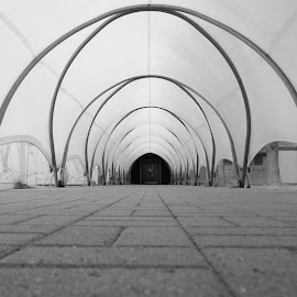 Tarpaulin Tunnel by DJ Cockburn - Buildings & Architecture Other Interior ( tarpaulin, hendon, london, black and white, arches, royal air force, museum, raf, tunnel )