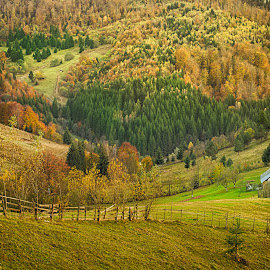 by Daniel Alexandru - Landscapes Mountains & Hills ( fall, color, colorful, nature,  )