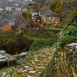 Makrinitsa by Stratos Lales - City,  Street & Park  Neighborhoods ( neighborhood, path, traditional, pelion, leaves )