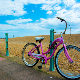 Pink and blue by Paul Coomber - Transportation Bicycles ( blue sky, pebbles, pink, seaside, bicycle,  )