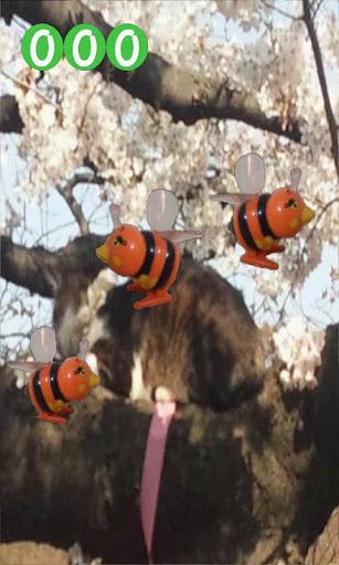 Bee Dance with Sakura