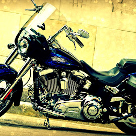 Sweet Ride! by Melissa Marts Faust - Transportation Motorcycles ( harley, harley davidson, blue, motorcycle, transportation )