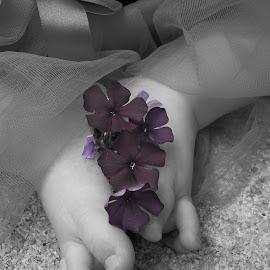 by Angela Guyitt - Babies & Children Hands & Feet