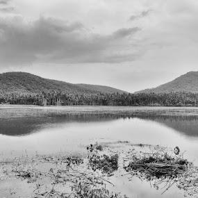 field  by B Thottoli - Black & White Landscapes ( black and white, landscape )