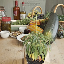 Foraging Talk, Demonstration & Taster menu: