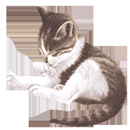 娛樂必備App|Pet Me Cat LOGO-綠色工廠好玩App