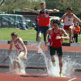 Running in the steeplechase by Alec Halstead - Sports & Fitness Other Sports (  )