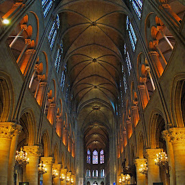 Notre Dame by Sérgio Martins - Buildings & Architecture Places of Worship ( paris, church, dotre dame, dome, france )