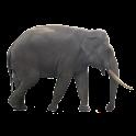 Elephant Sticker icon