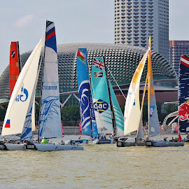 Sailing #1 by Koh Chip Whye - Sports & Fitness Other Sports (  )