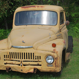 An abandoned classic by David Gilchrist - Transportation Automobiles