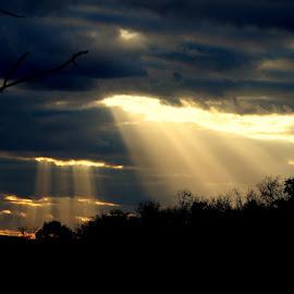 by Jenna Quin - Landscapes Sunsets & Sunrises (  )