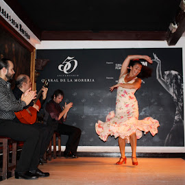 Flamenco Dance by Valentin Rodriguez A - News & Events Entertainment (  )