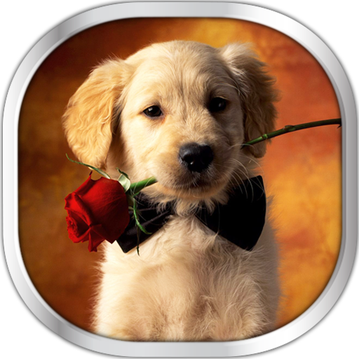 Dog Puppies Live Wallpaper - Android