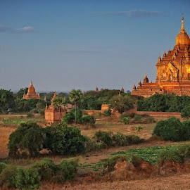Golden Pagoda at Old Bagan by Crispin Lee - Landscapes Travel