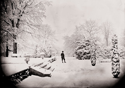 The snowy garden at Clonbrock, Ahascragh, Co. Galway , December 1870 (CLON 2034).