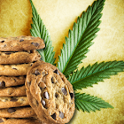 Weed Cookbook 2 icon