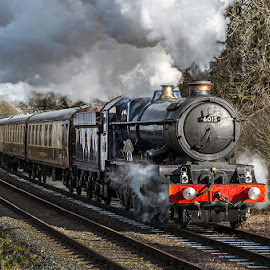 King Richard III by Vin Scothern - Transportation Trains
