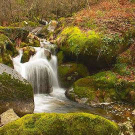 Elf's land by João Vaz Rico - Landscapes Waterscapes