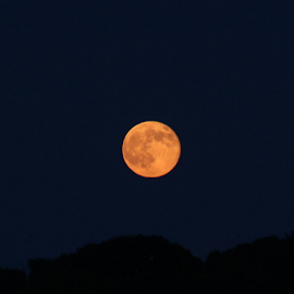 last night, when the moon first came out..... by Susanne Carlton - News & Events Science ( blue, orange. color,  )