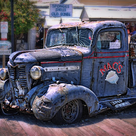 Old Truck in Key West by Becky Kempf - Transportation Automobiles ( truck, key west, abandoned )