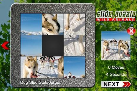 Game Slide Puzzle Wild Animals APK for Windows Phone
