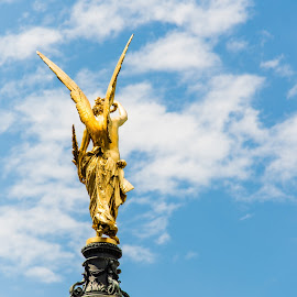 Golden Angel by Franco Beccari - Buildings & Architecture Statues & Monuments ( clouds, angel, golden angel, vienna, statue, sky, monument,  )