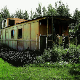 Caboose by Michelle Bonin - Buildings & Architecture Decaying & Abandoned ( old buildings, building, caboose, grass, trees, landscape, flowers, decaying, trains, shrubs )