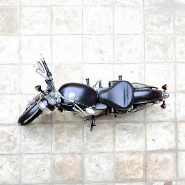 Bullet Ant by Sandeep Nagar - Transportation Motorcycles ( royal enfield, ant, bullet, selective color, pwc )