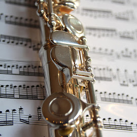 Flute by Patricia Hider - Artistic Objects Musical Instruments ( music, flute, silver, sterling silver, sheet music,  )