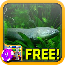 Electric Eel Slots - Free