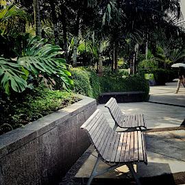 by Janette Ho - City,  Street & Park  City Parks ( public, bench, furniture, object,  )