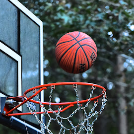 Driveway Basketball by Roy Walter - Sports & Fitness Basketball ( basketball, fitness, sports, net, rim )