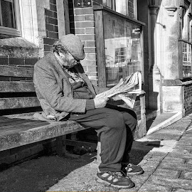 Engrossed by Janet Morgan - People Portraits of Men ( bench, black and white, street, flat cap, man )