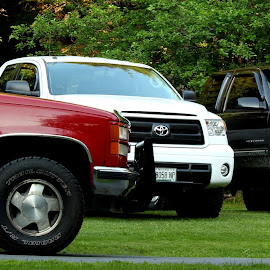 One of These is Not Like the Others by Shelby Taylor - Transportation Automobiles ( truck, transportation, chevy, toyota )
