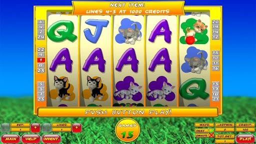 Slot Tales Crazy Kitten