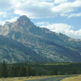 Grand Tetons by Holly Herrmann - Landscapes Travel ( yellowstone national park, tetons )